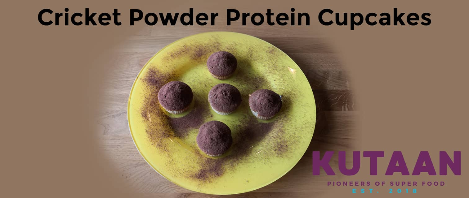 Picture of cricket powder protein pancakes on a yellow platter.